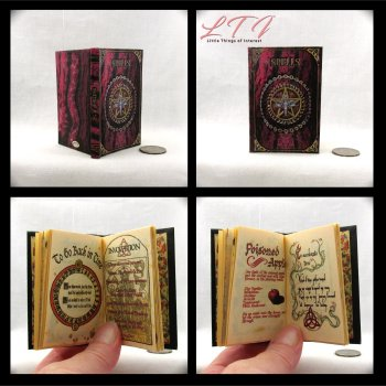 BOOK OF SHADOWS Spell Book Illustrated Readable Miniature Scale Book