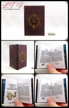 A BEGINNERS GUIDE TO TRANSFIGURATION Illustrated Readable Miniature Scale Book Popular Boy Wizard Potter