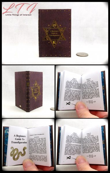 A BEGINNERS GUIDE TO TRANSFIGURATION Illustrated Readable Miniature Scale Book