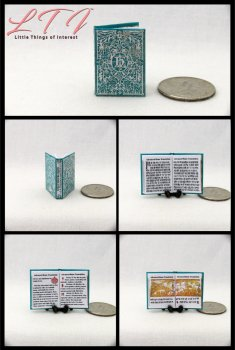 ADVANCED RUNE TRANSLATION Textbook Miniature One Inch Scale Illustrated Readable Book