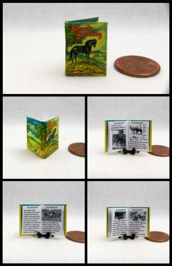 BLACK BEAUTY Miniature One Inch Scale Readable Illustrated Book