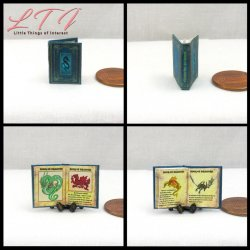 BOOK OF DRAGONS Miniature One Inch Scale Readable Illustrated Book
