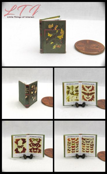 BUTTERFLIES AND MOTHS Miniature One Inch Scale Readable Illustrated Book