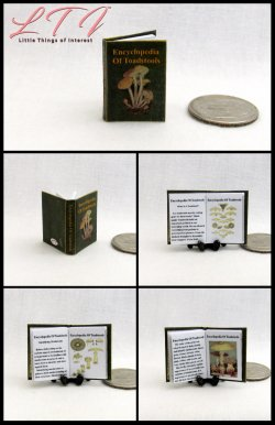 ENCYCLOPEDIA OF TOADSTOOLS MAGICAL Textbook Miniature One Inch Scale Illustrated Readable Book