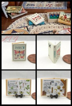 INSECTS ILLUSTRATED Miniature One Inch Scale Readable Book