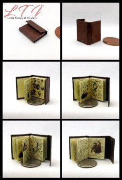 JOURNAL Of IMPOSSIBLE THINGS Miniature Scale Illustrated Book