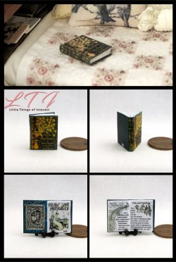 PRIDE AND PREJUDICE by Jane Austen Miniature One Inch Scale Readable Illustrated Book