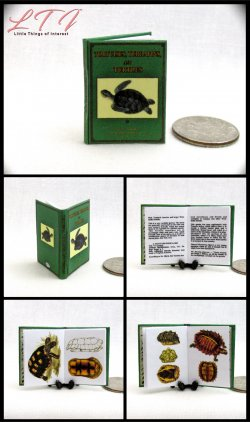 TORTOISES AND TURTLES Miniature One Inch Scale Illustrated Book