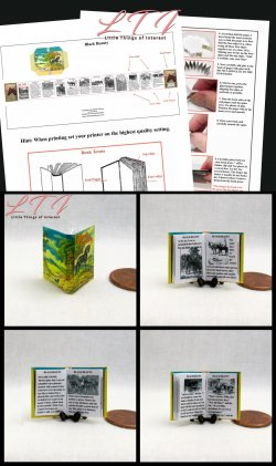BLACK BEAUTY Download Pdf Book and Construction Tutorial for a Miniature One Inch Scale Book